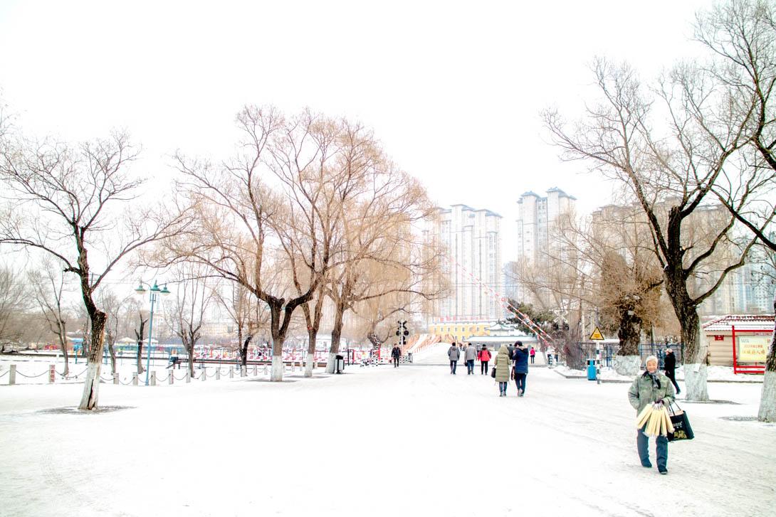 AndreaMai_ChangChun-8418