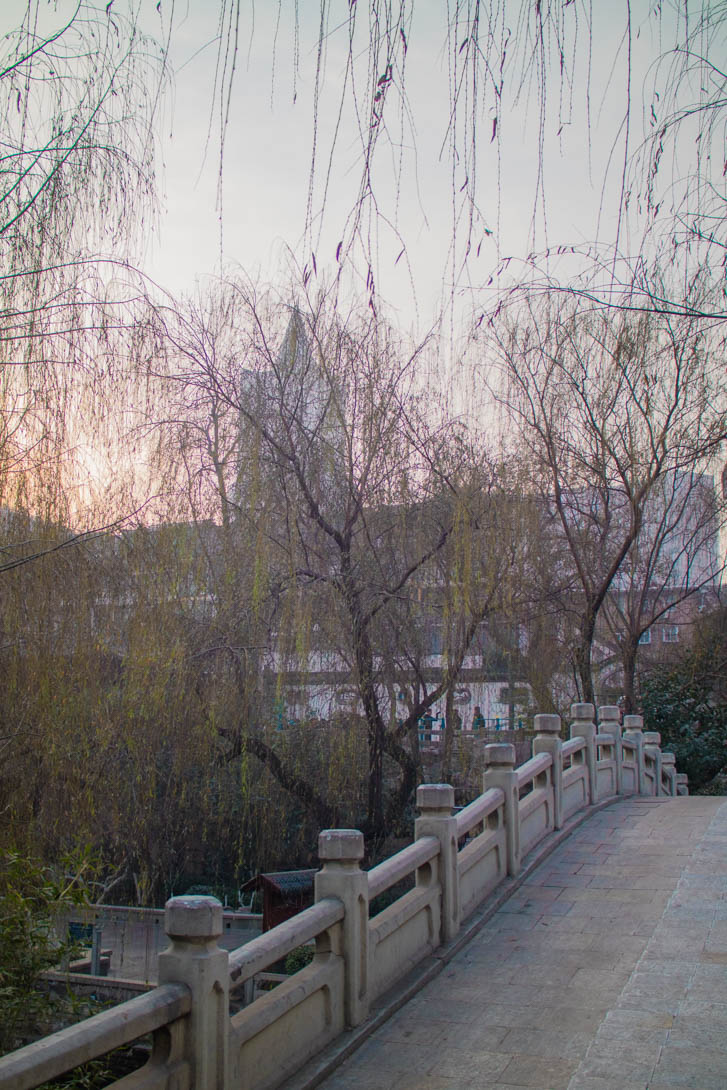 AndreaMai_Jinan-9839