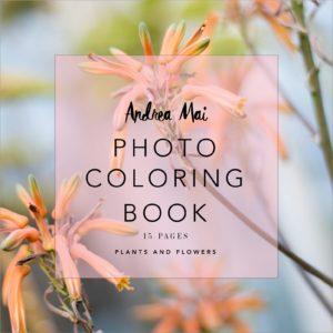coloring-sq