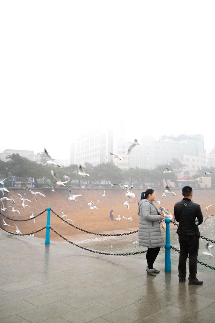 AndreaMai_Quingdao-0568