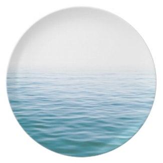 LAKE ONTARIO PLATE